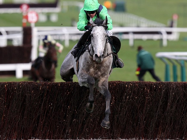 Our Father is a class apart at Cheltenham