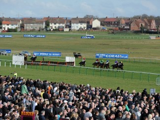 They race at Ayr