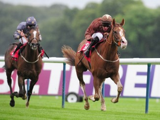 Top Notch Tonto (right)