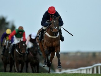 Bobs Worth is a possible mount for Tony McCoy in the bet365 Gold Cup