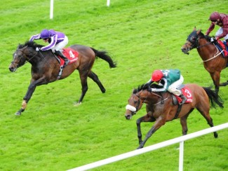 Red Label storms home against the rail