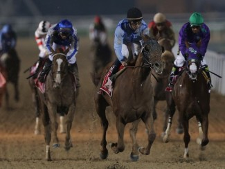 Prince Bishop holds too many guns for California Chrome (right)