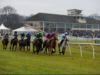 Lingfield action
