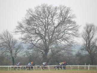 Action from Huntingdon Racecourse