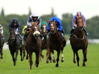 Ulysses produces a career-best performance in the Juddmonte International