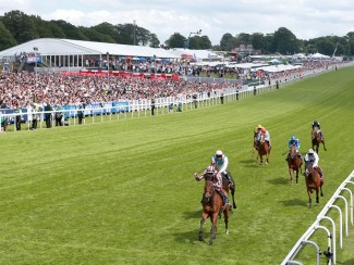 The finish to the 2014 Coronation Cup at Epsom