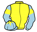 yellow, light blue sleeves, yellow armlets and star on light blue cap
