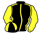 Jockey silk for Frontier Vic