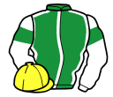Jockey silk for Watt Broderick