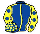 Jockey silk for Llewellyn