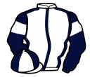 Jockey silk for Brantingham Breeze