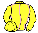 yellow, pink seams, yellow sleeves and cap