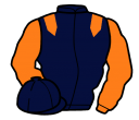 Jockey silk for Blown Cover