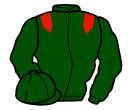 Jockey silk for Harzand