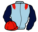 Jockey silk for Roy's Legacy