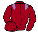 Jockey silk for Worlds His Oyster