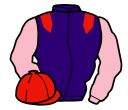 Jockey silk for Clan Chief