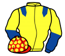 Jockey silk for Juno The Muffinman