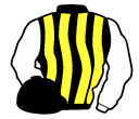 black and yellow stripes, white sleeves