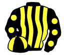 black and yellow stripes, black sleeves, yellow spots, quartered cap