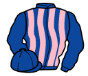 royal blue and pink stripes