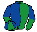emerald green and royal blue (halved), halved sleeves, quartered cap