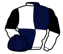 dark blue and white (quartered), white and black halved sleeves
