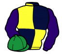 dark blue and yellow (quartered), purple sleeves, emerald green cap