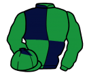 Jockey silk for Elysian Prince