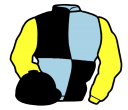 light blue and black (quartered), yellow sleeves, black cap