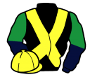 Jockey silk for Mister Grez