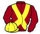 Jockey silk for Golden Gael
