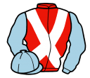Jockey silk for Flicksta