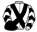 Jockey silk for Seventh Hussar