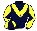 Jockey silk for Abbey Lane