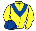 Jockey silk for Vercingetorix