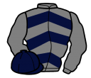 grey, dark blue chevrons on body, dark blue cap