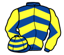 Jockey silk for Arc Lighter