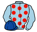 Jockey silk for Seymour Eric