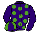 purple, light green spots, purple sleeves, quartered cap