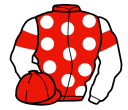 Jockey silk for Appyjack