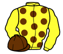 Jockey silk for Duke Cosimo