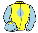 yellow, light blue diamond and sleeves, light blue cap, yellow diamond