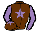brown, mauve star, mauve sleeves, black seams, brown cap, mauve star