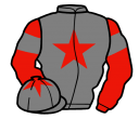grey, red star on body and cap, red sleeves, grey armlets