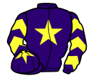 purple, yellow star, chevrons on sleeves, purple cap, yellow star