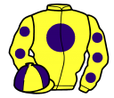 yellow, purple disc, yellow sleeves, purple spots, quartered cap